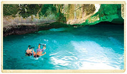 Tours and Activities in Jamaica